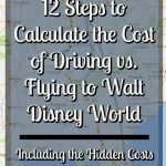 12 Steps to Calculate the Cost of Driving vs. Flying to Walt Disney World (including the hidden cost)