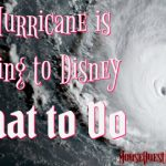 A Hurricane is Coming to Disney! What to do!