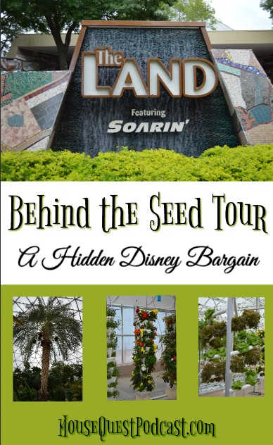 Behind the Seeds
